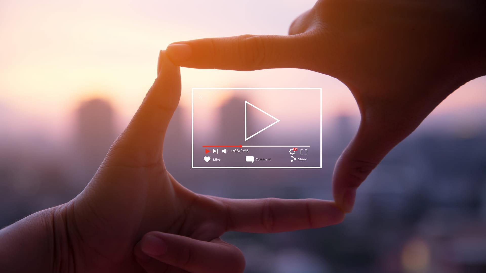 Video Yönetim Sistemleri